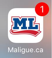 Notification sur l'icône de l'app